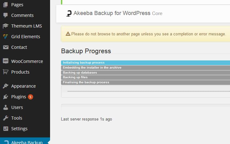 backup-process