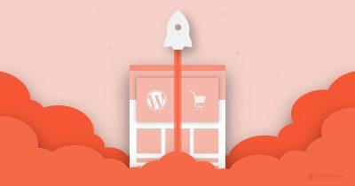 WordPress ecommerce theme woo