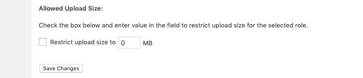 如何限制WordPress站点中的文件上载权限插图5
