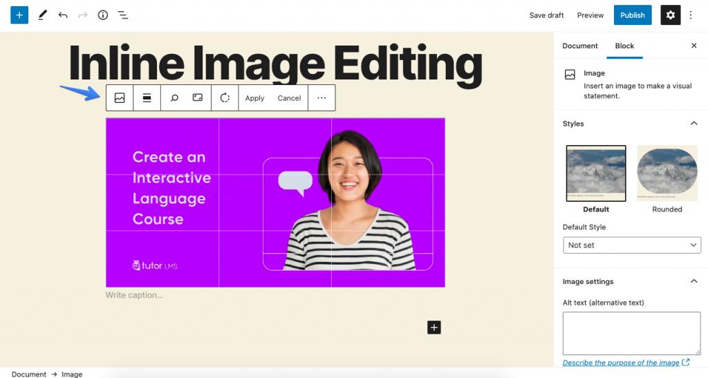 wordpress 5.5 early look inline image